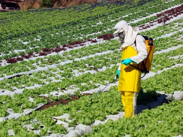 agrotoxicoagricultura1