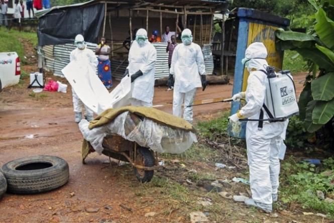 Organización Mundial de la Salud decreta emergencia de salud pública. Foto: Agência EFE