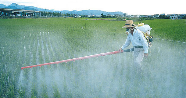 Agrotóxicos. Fonte Unisinus