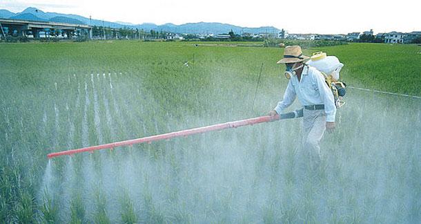 Agrotóxicos. Fuente Unisinus